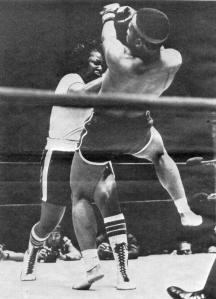 Jackie Tonawanda TKO's male boxer!